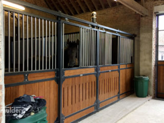 Stable in Netherlands