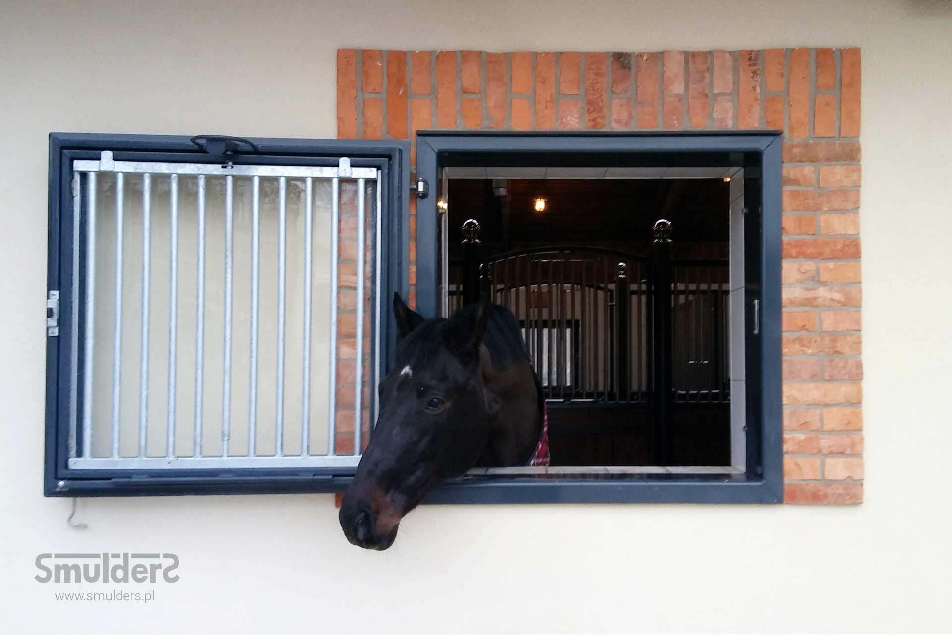 https://www.smulders.pl/wp-content/uploads/2019/03/f008_internal-stables_windsor_barn-door_door_windows_LAN_SMULDERS_PL.jpg